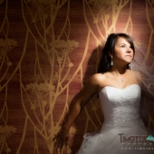Bridal Portrait in Denver