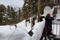 Ring and snowboards