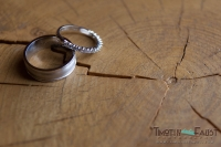 Ring and log