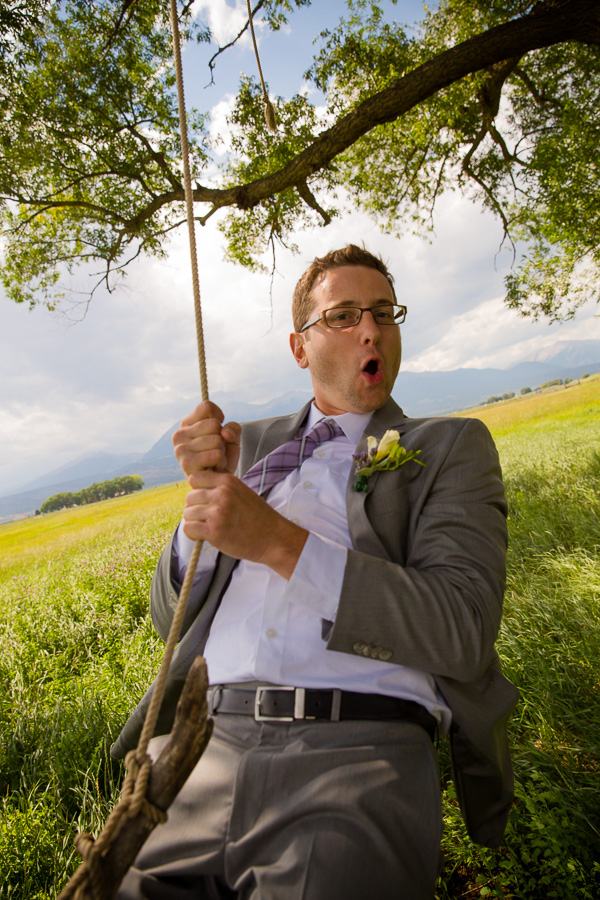 Groom tire Swing