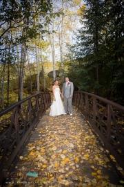 Beaver Creek Bridge and fall Aspen Leaves