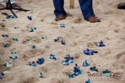 Flower petals on beach