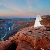 Bride in the Grand Canyon