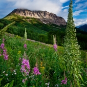 Clearing Storm on Gothic Mountain, Crested Butte, Colorado
