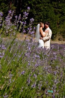 Washington State Wedding, 2012