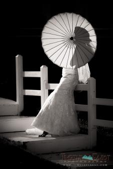 Aspen Wedding, 2013