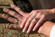 Couple's hands with their dog's paw