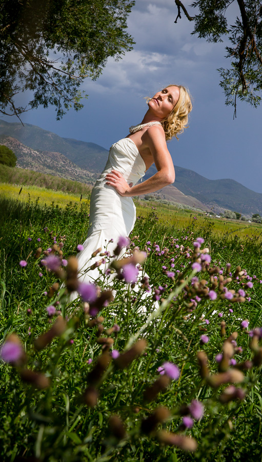 Portrait of bride in sun and wildflowers