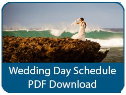 Wedding Day Publication PDF Download